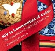 Cultural competency promising practices
